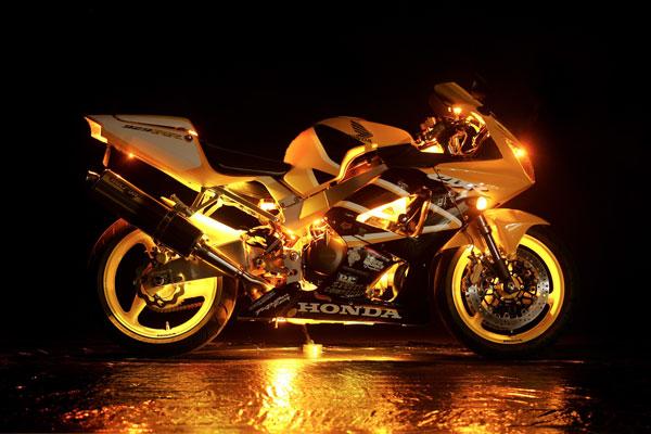Low Price Waterproof Flexible Led Strip Lights Harley